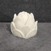 Savon marseille lotus 70g 3euros50